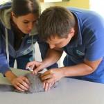 Gyvūnų ženklinimą atlieka vet. gydytojas Vytautas Šėvelis padedant vet. felčerei Agnei Kleponienei